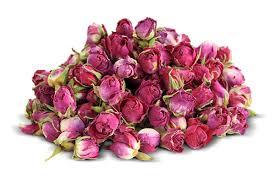 خرید و فروش غنچه گل محمدی