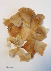 قیمت روز انواع پودر مرغوب کتیرا خرمنی در بازارصادراتی سال 1400